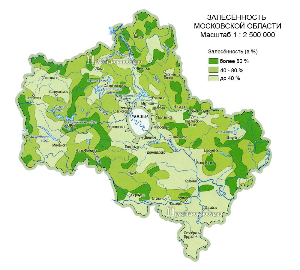 Сосновые леса в подмосковье на карте